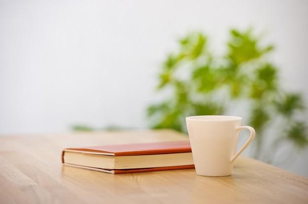 trabajar la memoria con la lectura